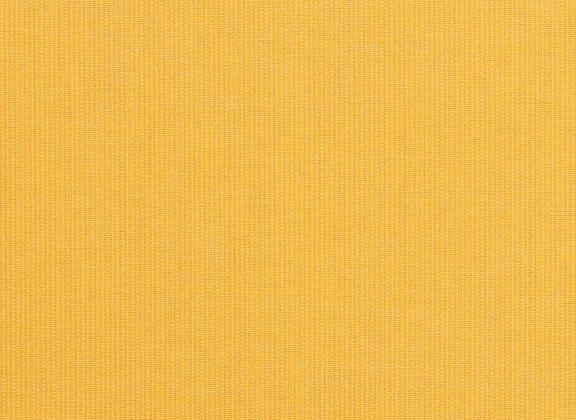 Spectrum-Daffodil 48024-0000