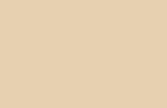 Silk-habotai-4400-3105-oatmeal