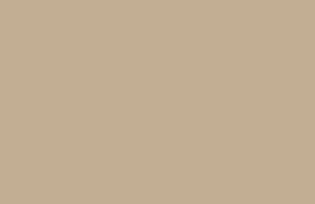 Silk-habotai-4400-3117-flint