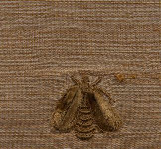 Napoleon-bees-brown-bees